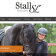 stall_sl